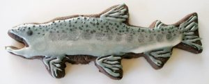 Rainbow Trout Chocolate Cookie