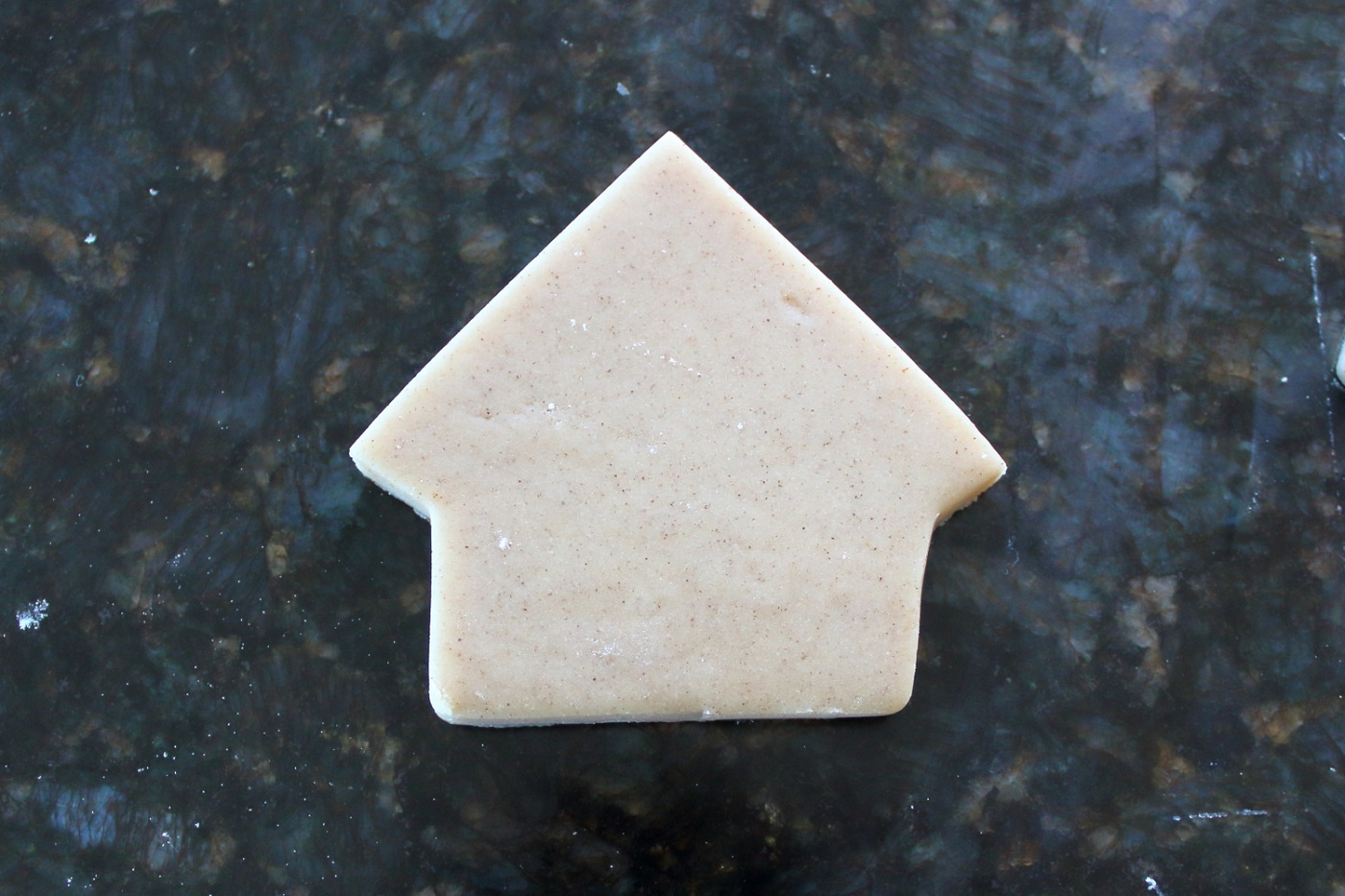 Final cut of the house cookie